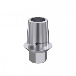 Ti-Base abutment Internal Hex CAD/CAM systems