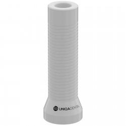 Выжигаемый Пластиковый Цилиндр с Винтом для многокомпонентного абатмента